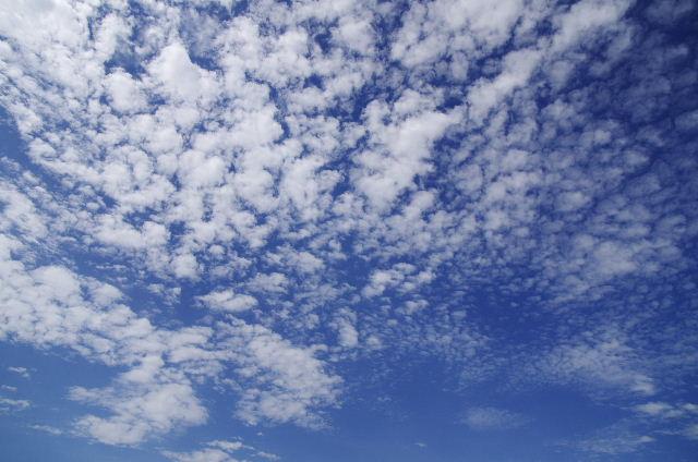うろこ雲120816.JPG