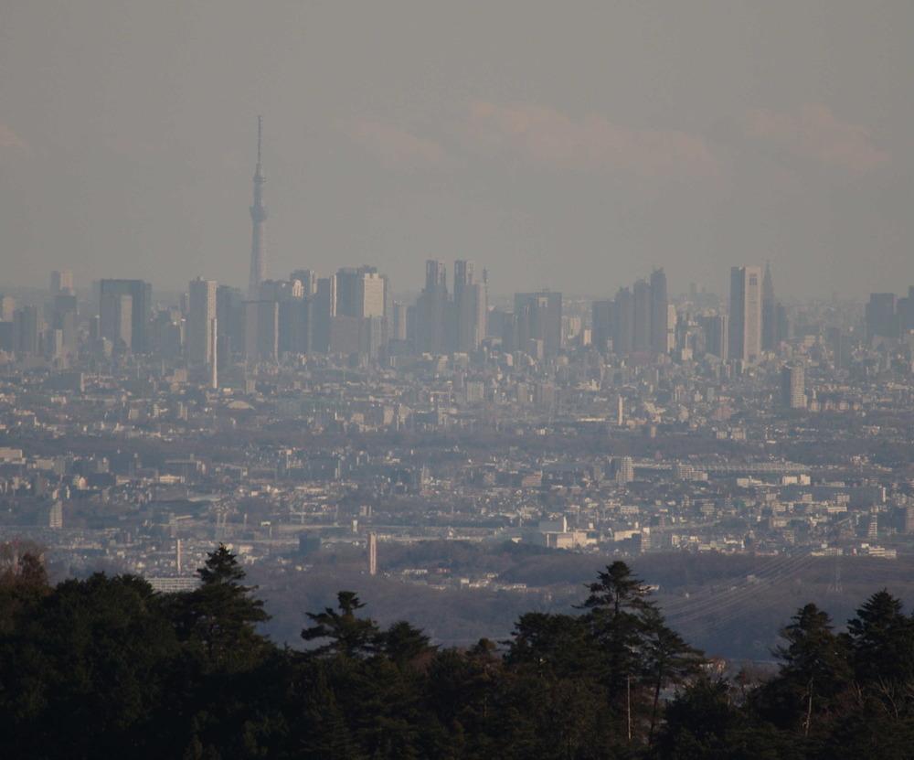 スカイツリーと都心のビル200109.JPG
