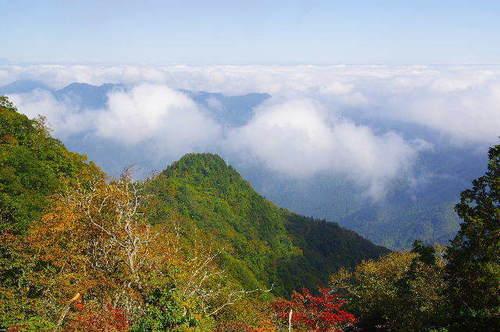 天目山からの雲海151003.JPG