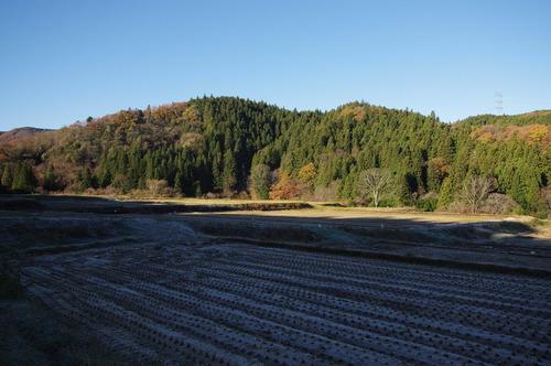 栃木の丘陵地171124.JPG
