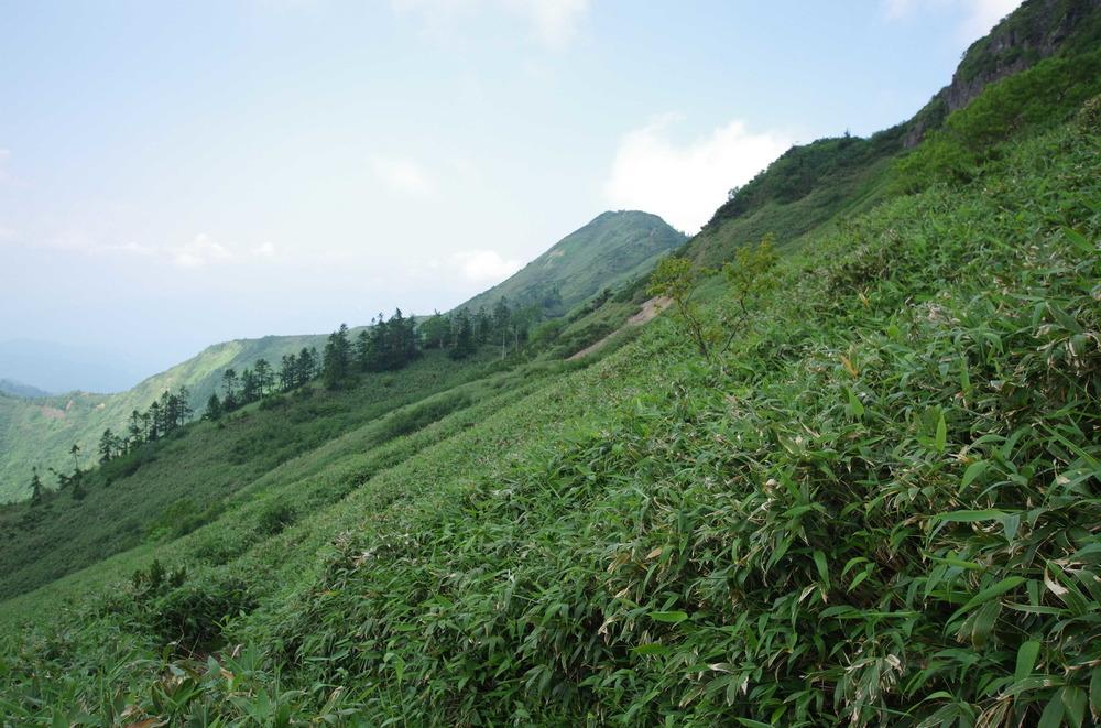 武尊山頂190802.JPG