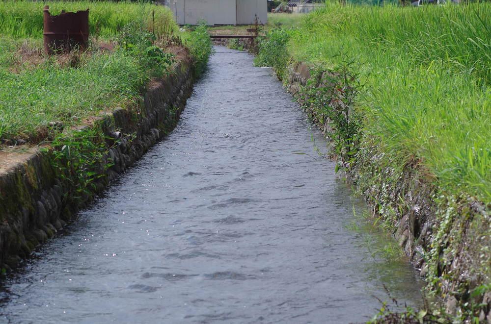 水路200822.JPG