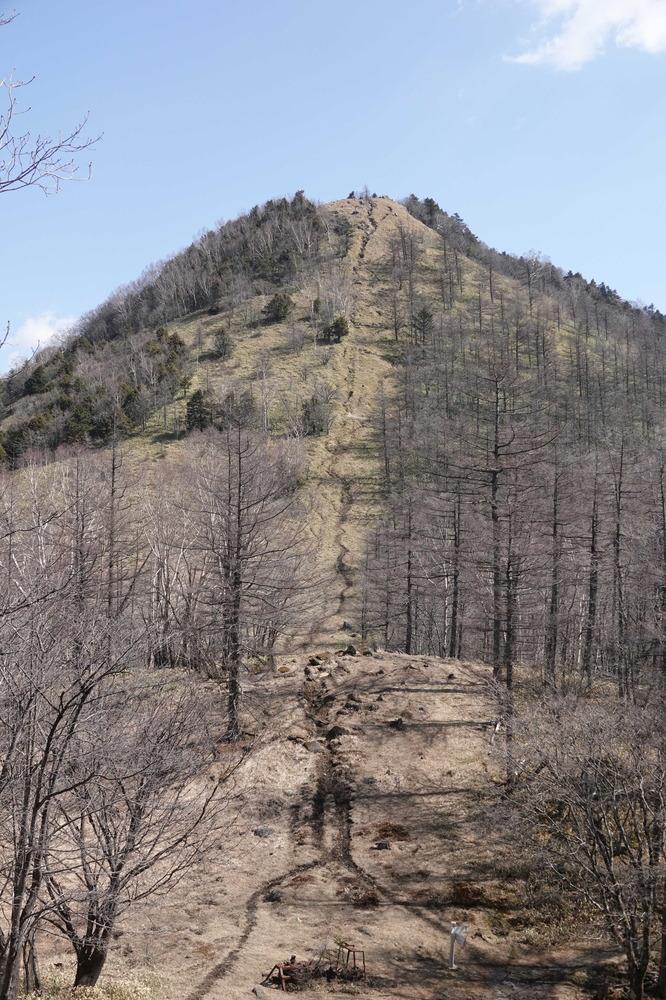 笠取山210326.JPG