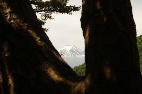 股覗きからの富士170603.JPG