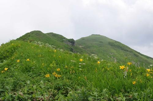 茂倉岳方面170714.JPG